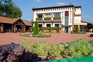 romania gastronomy food and wines